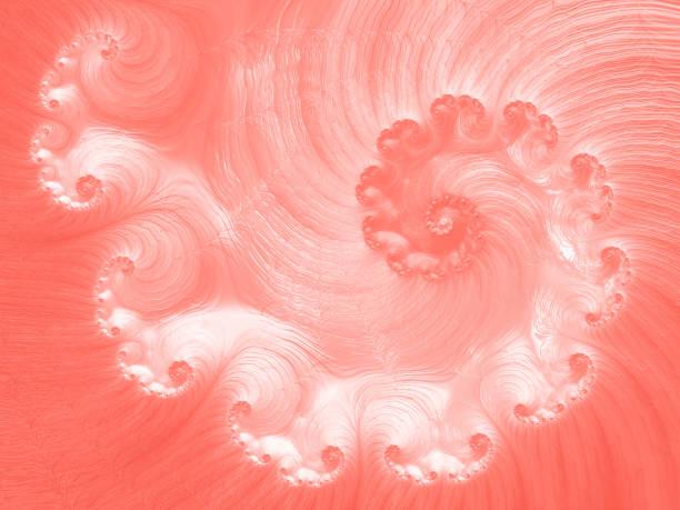 spiraal koraal living nautilus seashell abstract fractal kunst glinsterende roze peachy ombre golfpatroon - pink and orange seashell background stockfoto's en -beelden