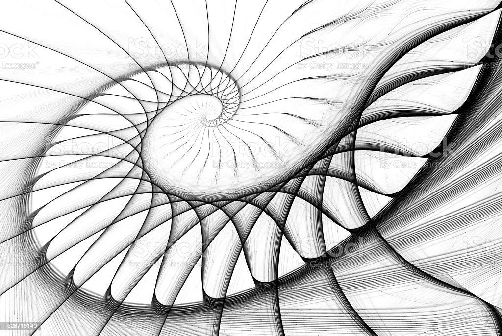 spiral staircase black on white stock photo