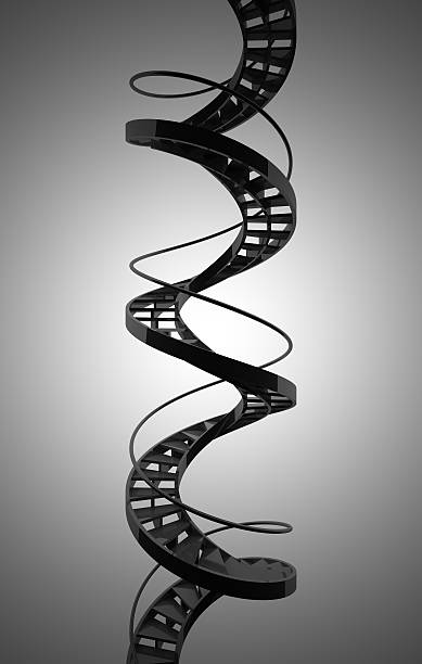 Spiral staircase resembling DNA stock photo