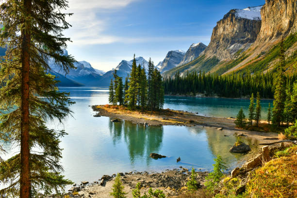 Spirit Island in Maligne Lake, Jasper National Park,Canada Beautiful Spirit Island in Maligne Lake, Jasper National Park, Alberta, Canada canadian rockies stock pictures, royalty-free photos & images