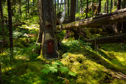 Magicail forest dwelling. Rendered in 3d