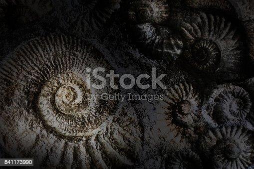 istock Spirlas abstract background. 841173990