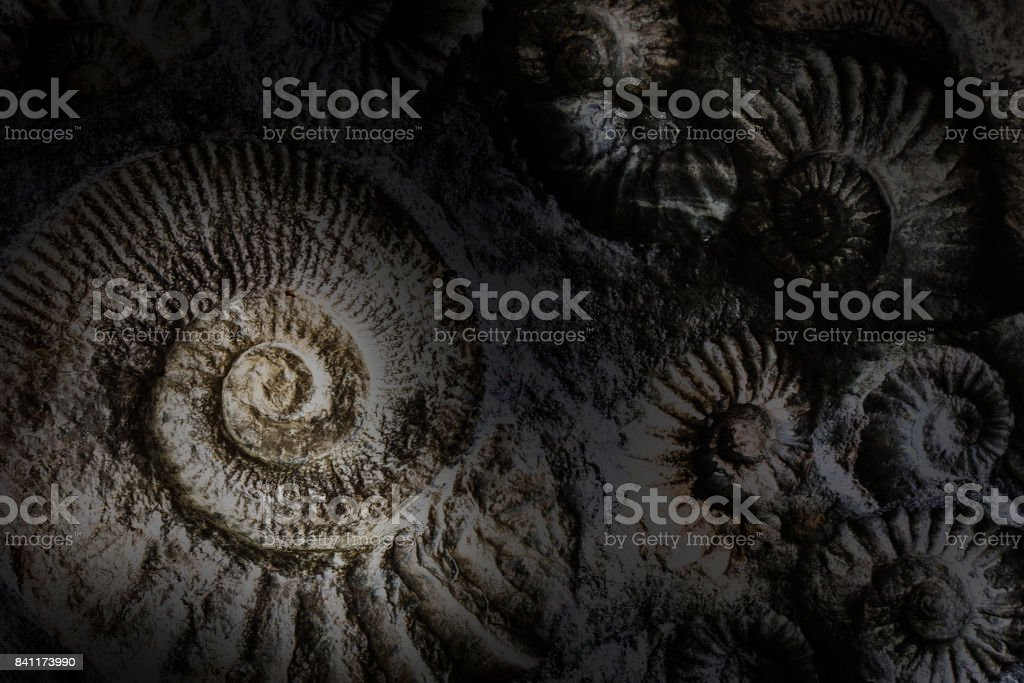 Spirlas abstract background. stock photo