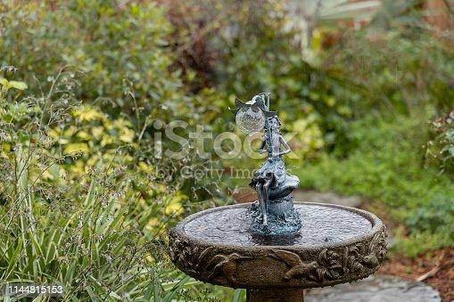Spring rain splashes into a birdbath adorned with a Garden Fairy.