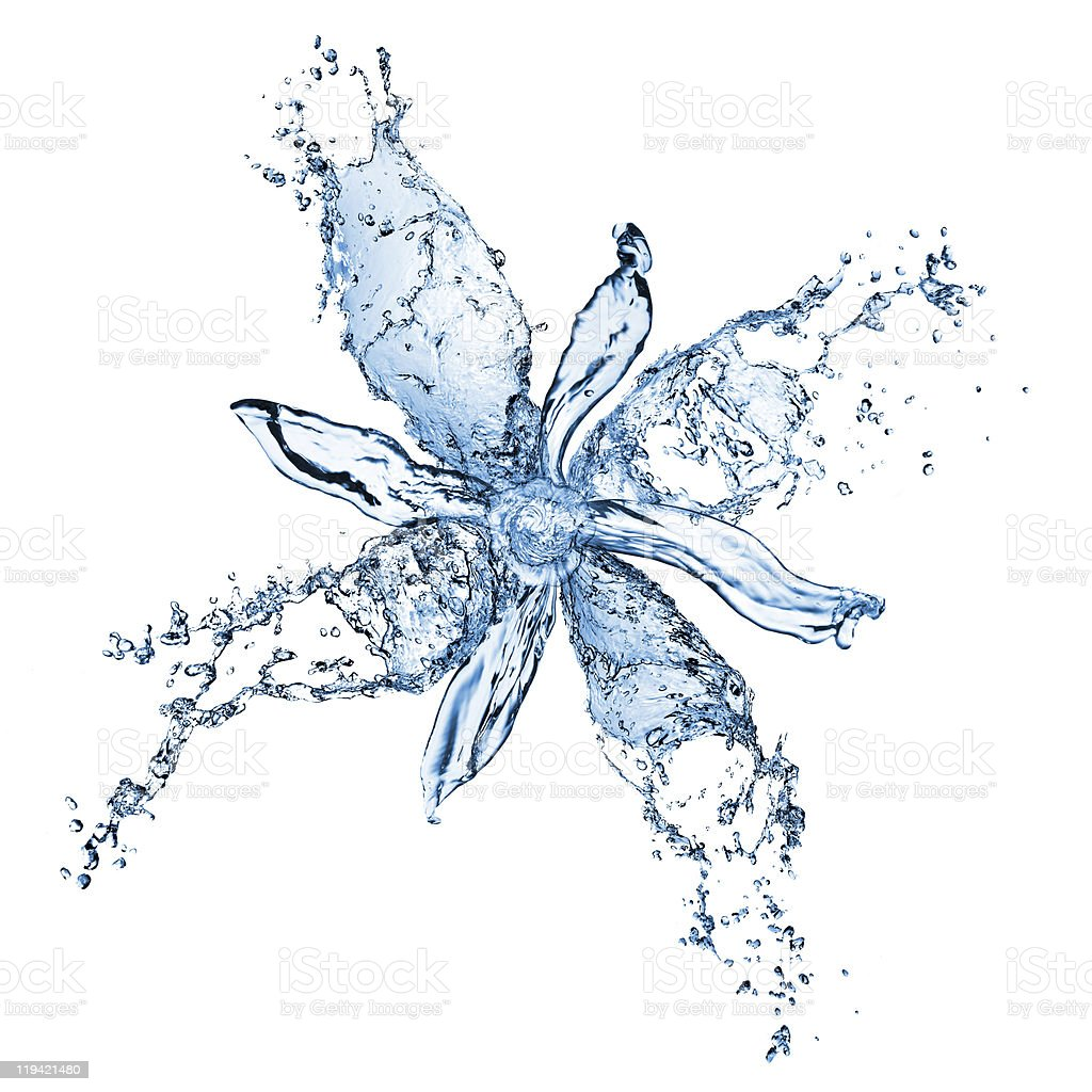 Splash of water forming a flower flower from water splashes isolated on white Abstract Stock Photo