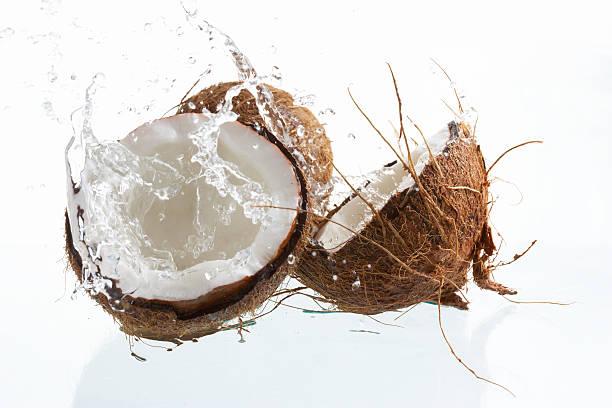 splashing coconut stock photo