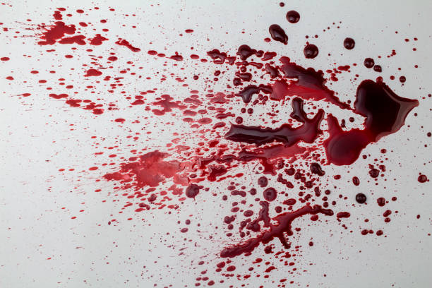 Splattered blood stain isolated on white background - photo stock photo