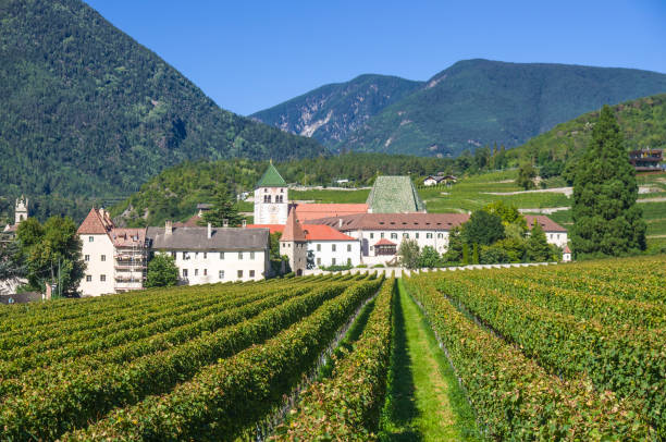 splendid vineyards of the abbey of novacella with ancient alpine monastery, producer of delicious wines stock photo