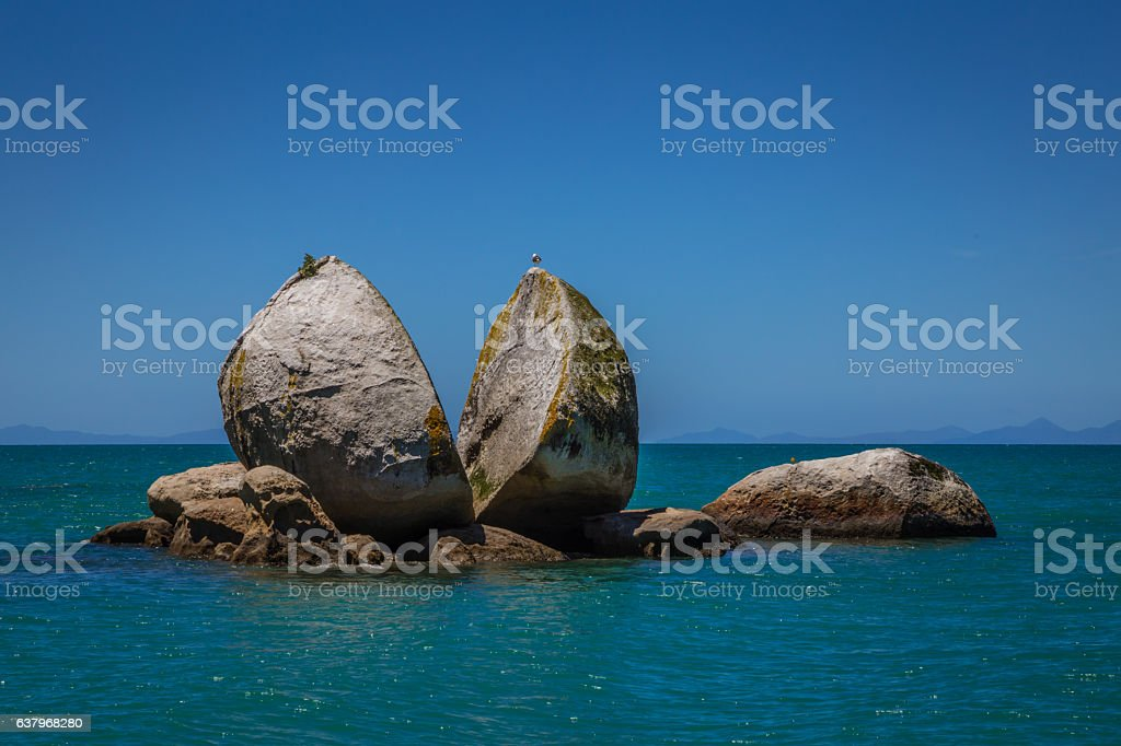 Split apple rock with seagull on top, Kaiteriteri New Zealand stock photo