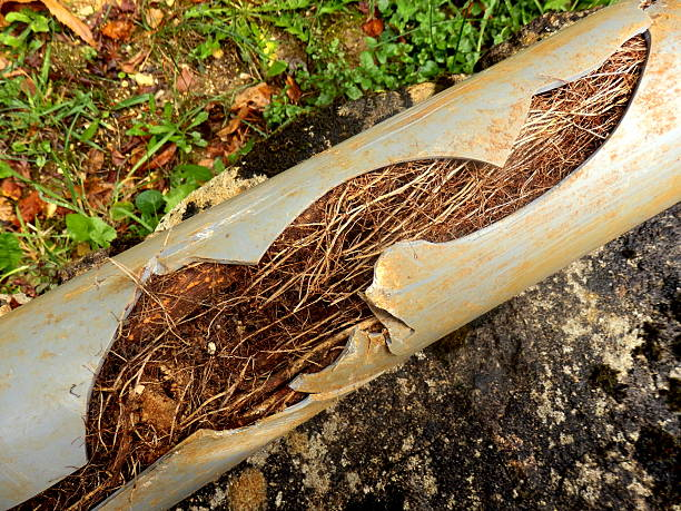 Split drainage pipe - foto de stock
