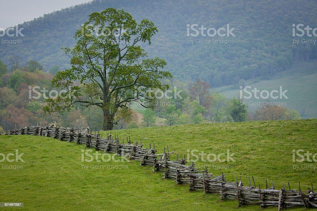 Split rail fence crosses a green mountain pasture. royalty-free stock photo