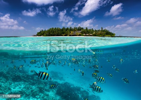 istock Split view in the Maldives islands 1125859438
