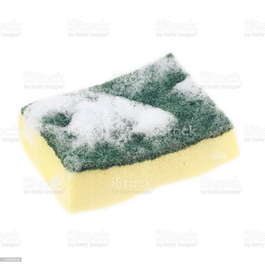 sponge with foam isolated on white stock photo