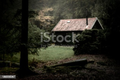 Spooky cabin in the woods on a hazy morning.