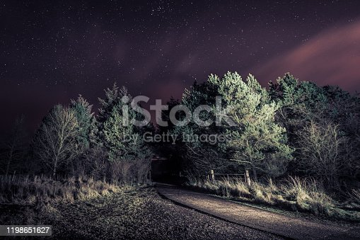 a spooky forest path under a starry sky shot at night illuminated by torchlight and dreamy colour grading, a long exposure shot in Northern Ireland