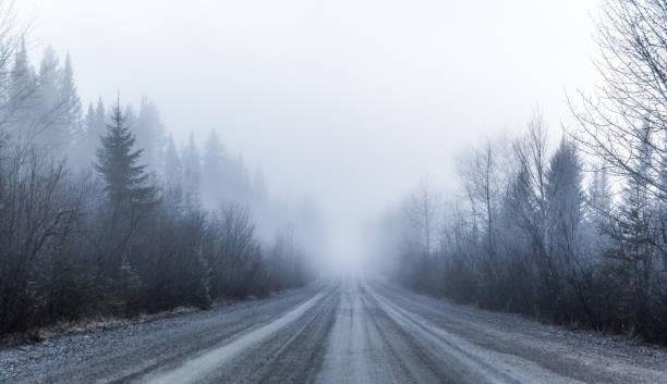 kuslig dimma och dålig sikt på en lantlig väg i skogen - cold street bildbanksfoton och bilder