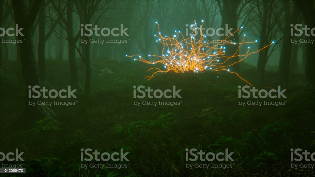 Spooky foggy forest with mysterious alien plants stock photo