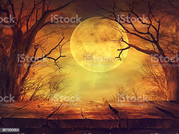 Photo of Spooky forest with full moon and wooden table