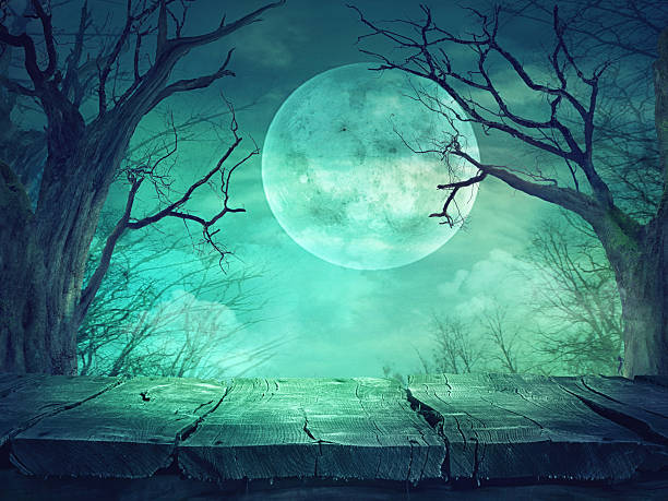 spooky forest with full moon and wooden table - waldfriedhof stock-fotos und bilder