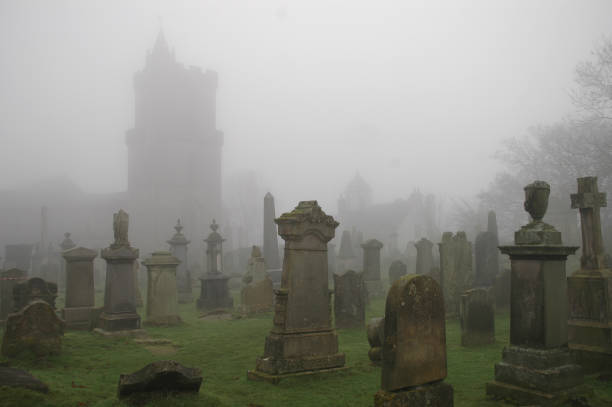 spooky graveyard - cemetery stock photos and pictures