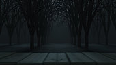 Spooky Halloween background with empty wooden planks, dark horror background. Halloween theme with copy space for text. Ideal for product placement. Easy to crop for all your social media and design need. Halloween concept. Produced with 3D software and PS.
