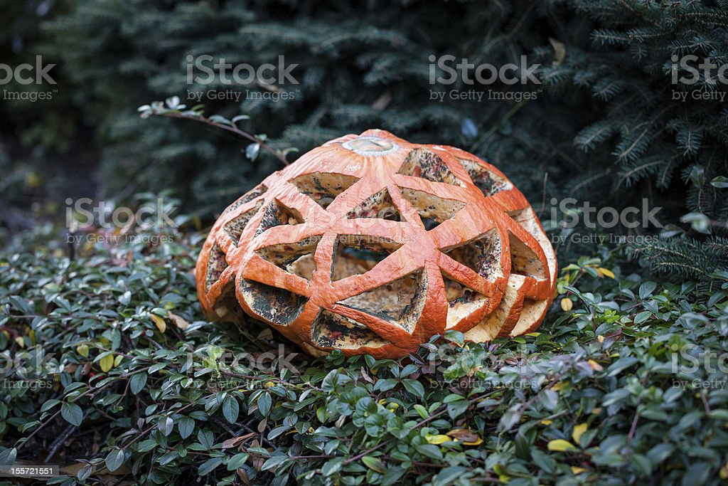Spooky Halloween Pumpkin royalty-free stock photo
