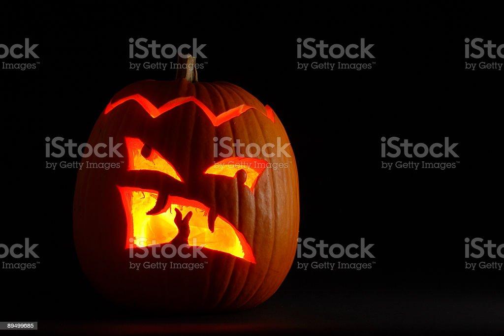 Spooky Halloween Pumpkin royalty free stockfoto