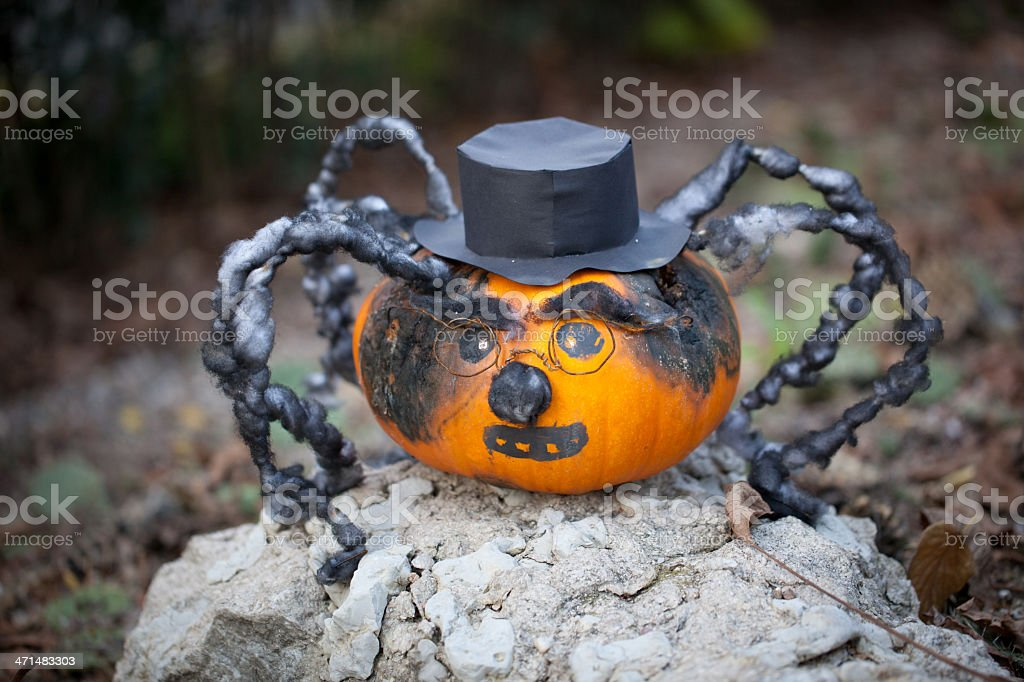 Spooky halloween pumpkin spider royalty-free stock photo