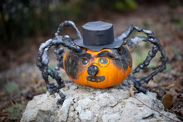 Spooky halloween pumpkin spider stock photo