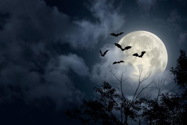 Spooky Halloween Sky stock photo