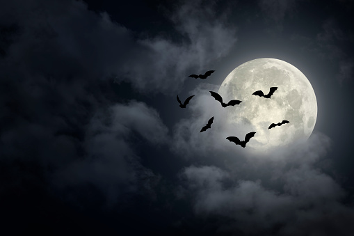 Dramatic Halloween sky with full moon and bats silhouette