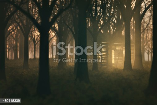istock Spooky mysterious old shed in the dark forest 460118309