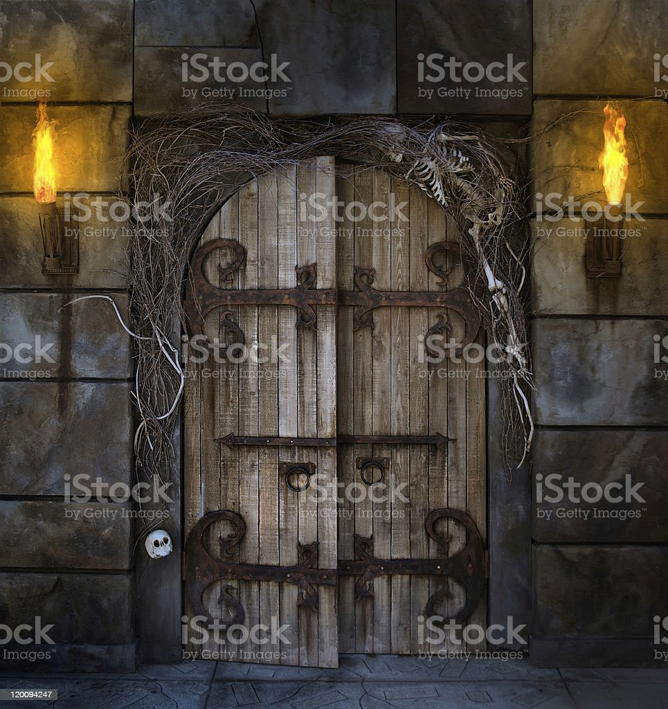 Spooky wooden planks door surrounded by vines and skeletons stock photo