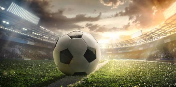 sport. leere fußball fußballplatz mit weißen flecken, grünen rasen textur und soccer ball. - fußball poster stock-fotos und bilder