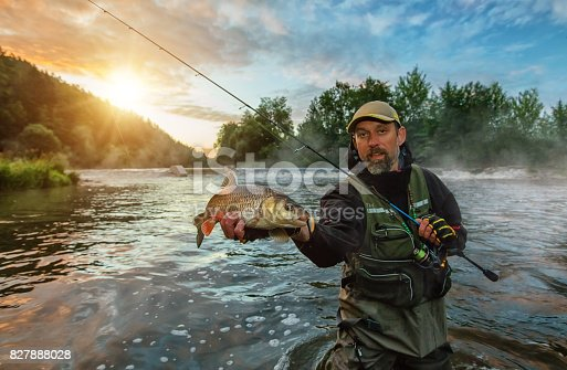 istock Sport fisherman holding trophy fish. Outdoor fishing in river 827888028