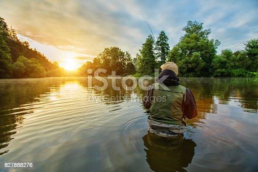istock Sport fisherman hunting fish. Outdoor fishing in river 827888276