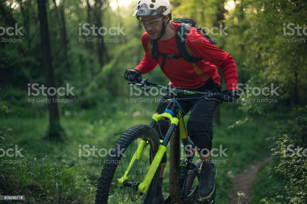 Sport man, mountain biker, rideing a cycle in forest. Down hill ride. royalty-free stock photo