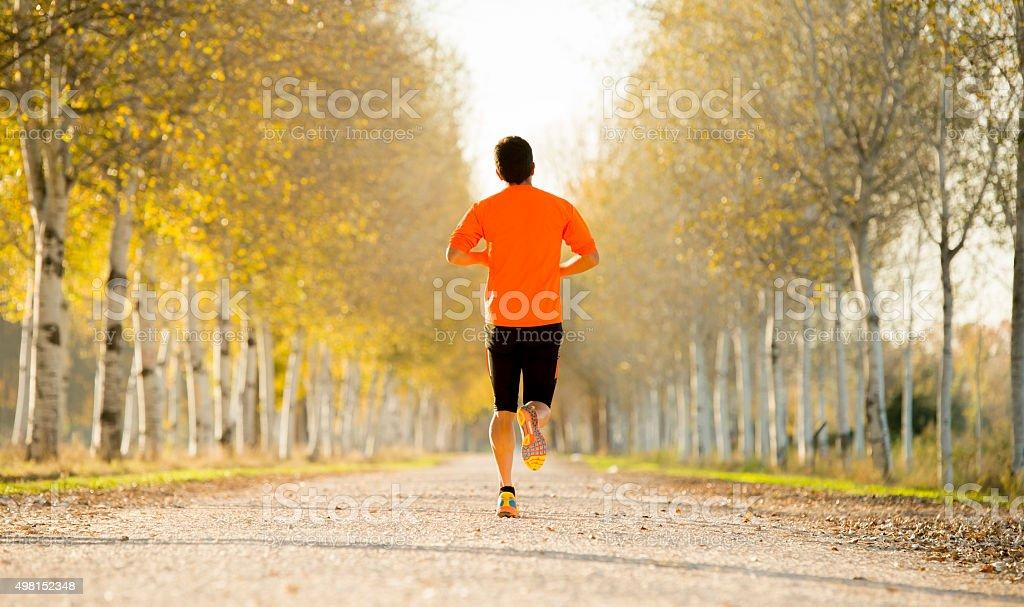 sport man running off road trees under beautiful Autumn sunlight stock photo