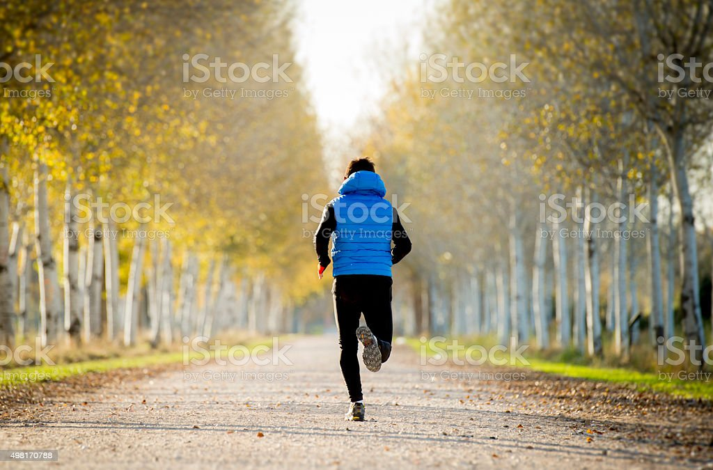 sport man running trail ground with trees under Autumn sunlight stock photo