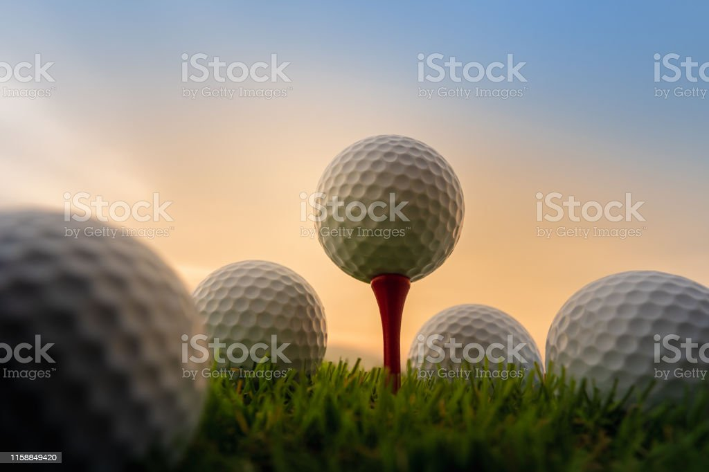 sport outdoor, golf ball on tee pegs ready to play in the green grass