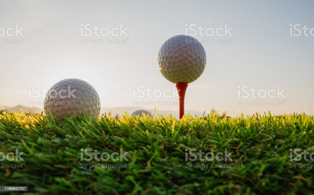 sport outdoor, golf ball on tee pegs ready to play in the green grass...