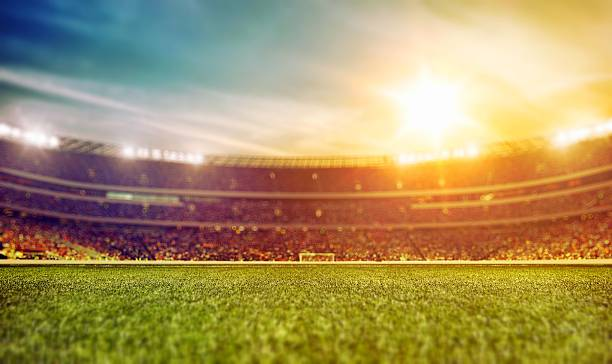 sport stadium with grass - soccer field stock photos and pictures