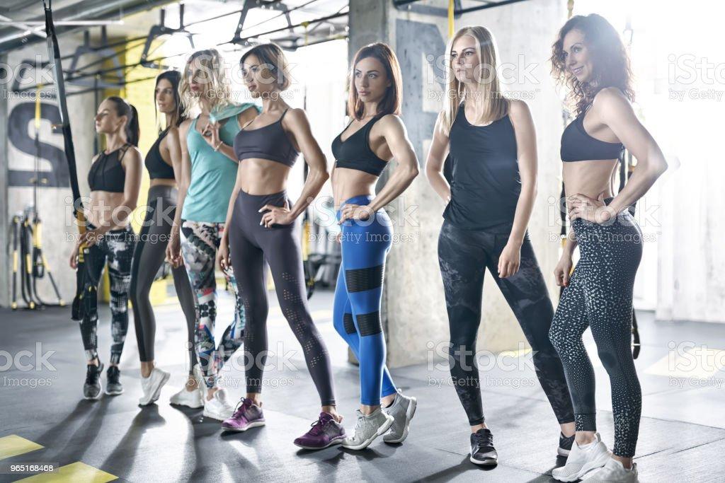 Sportive girls posing in gym zbiór zdjęć royalty-free