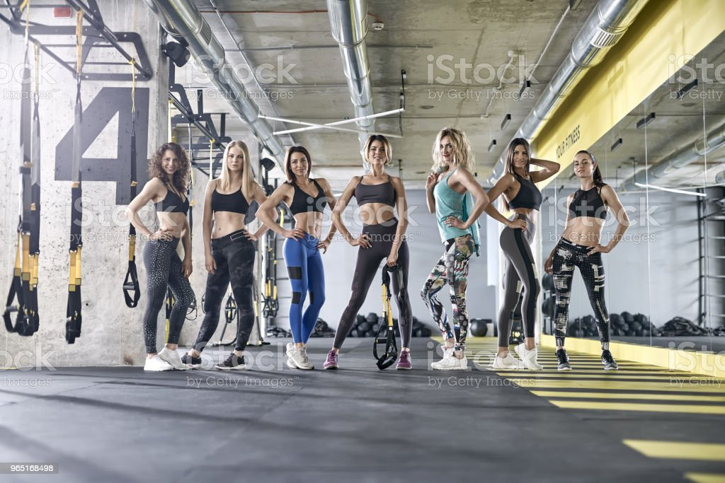 Sportive girls posing in gym royalty-free stock photo