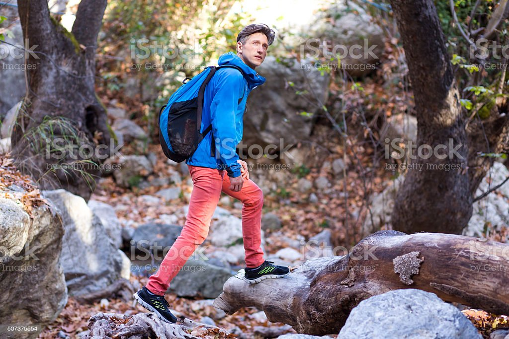 Sportive Hiker walking in wild Spring Forest stock photo