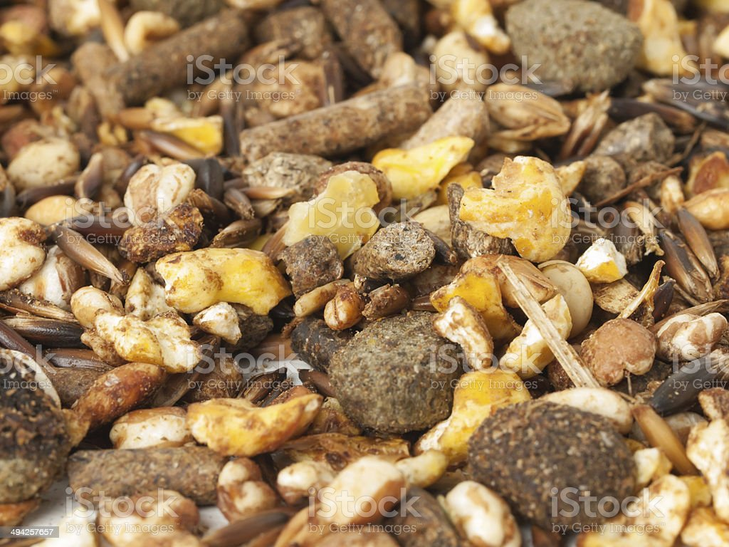 sportive  muesli background with black oats. for horse.macro stock photo