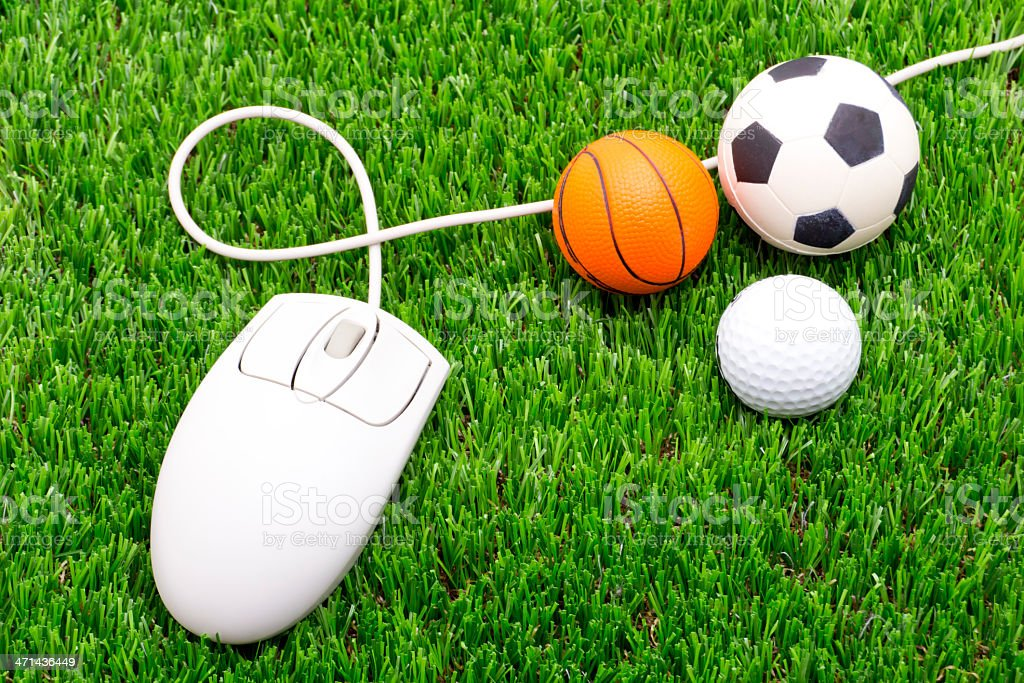 Sports Balls and Computer Mouse on Grass royalty-free stock photo