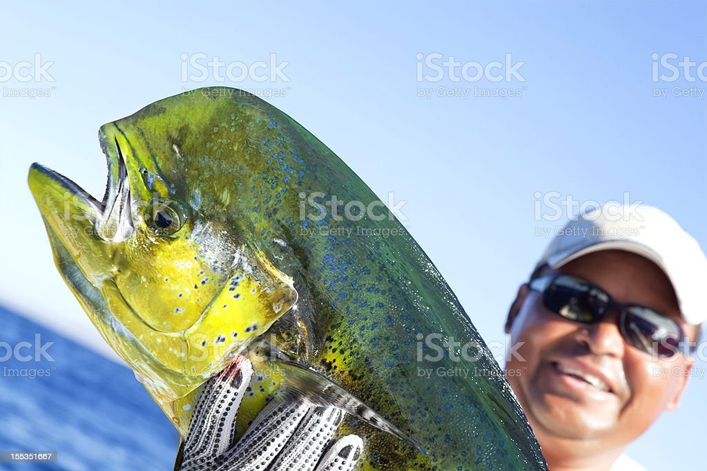 Sports: Dorado A successful day of fishing stock photo