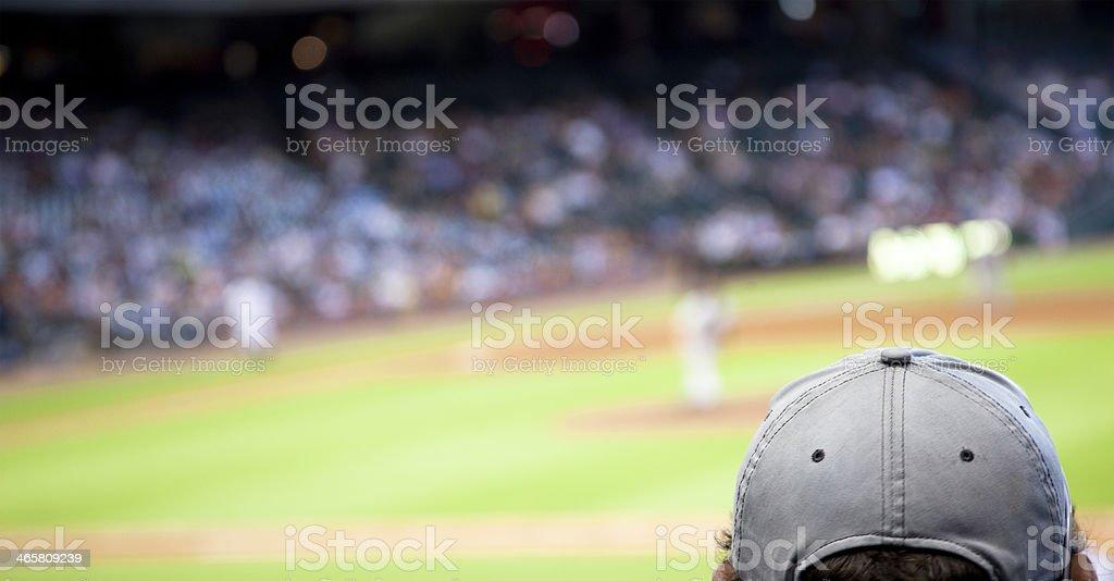 Sports: Professional baseball sports stadium. Fan foreground. stock photo