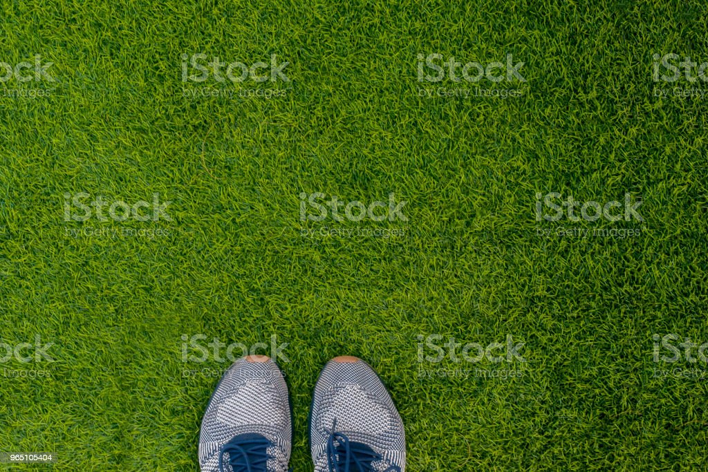 Sports shoes sneakers on fresh green grass. Sports in the open air. top view zbiór zdjęć royalty-free